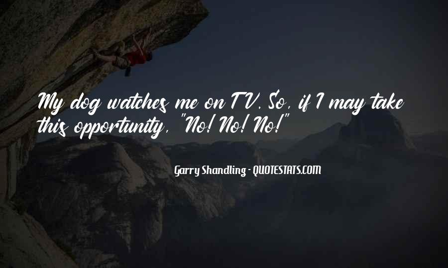 Garry Shandling Quotes #1401174