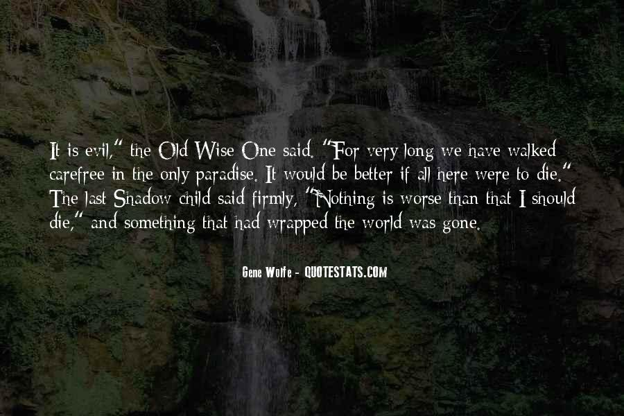 Gene Wolfe Quotes #1562122