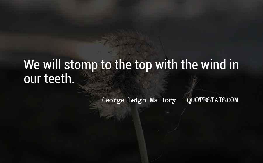 George Leigh Mallory Quotes #44760