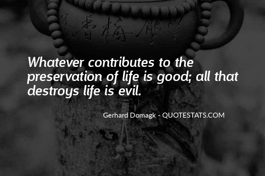 Gerhard Domagk Quotes #52166