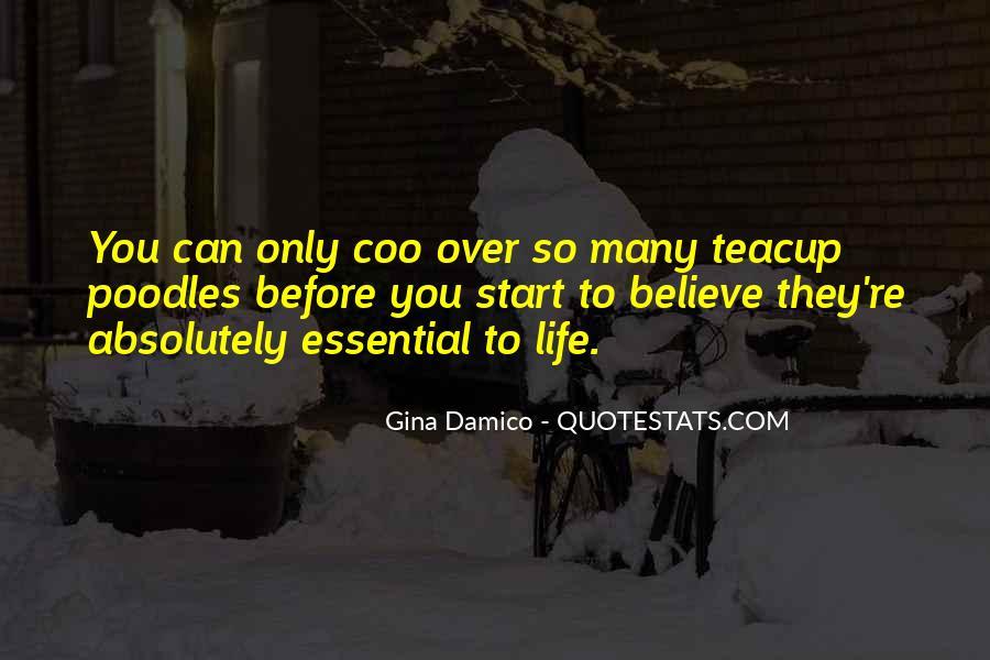 Gina Damico Quotes #1471819