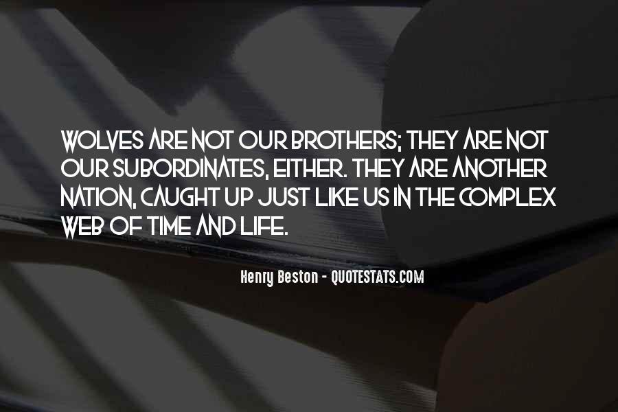 Henry Beston Quotes #574218