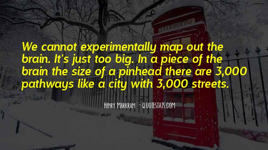 Henry Markram Quotes #1712800