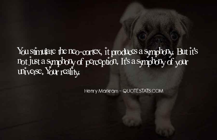 Henry Markram Quotes #412065