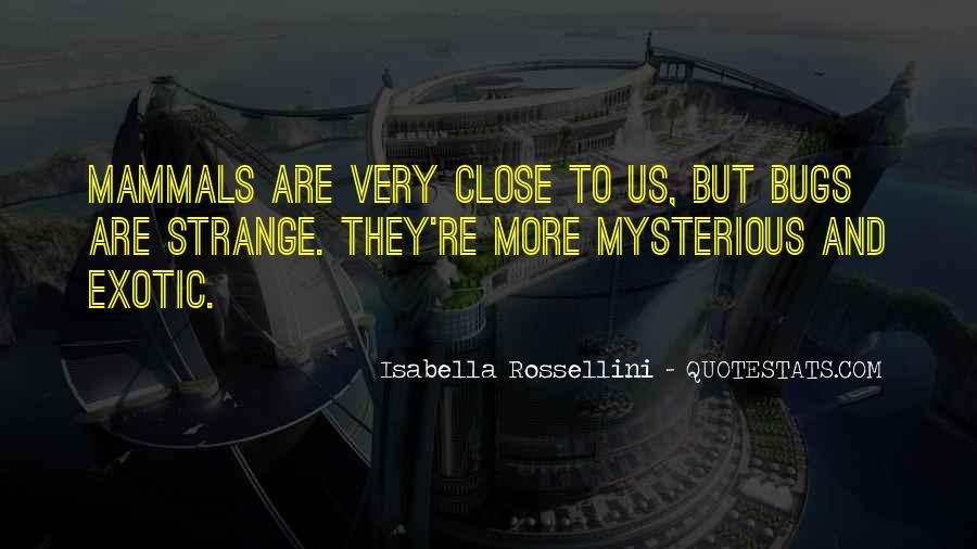 Isabella Rossellini Quotes #1524668