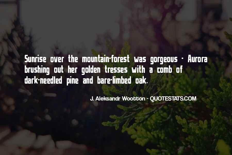 J. Aleksandr Wootton Quotes #674359