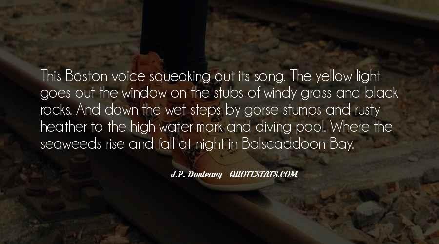J.P. Donleavy Quotes #630912