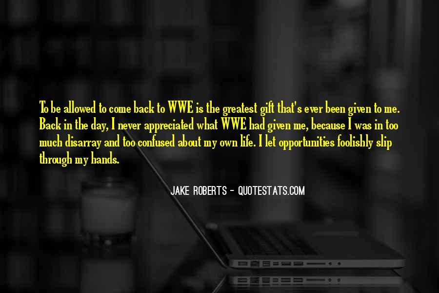 Jake Roberts Quotes #1601707