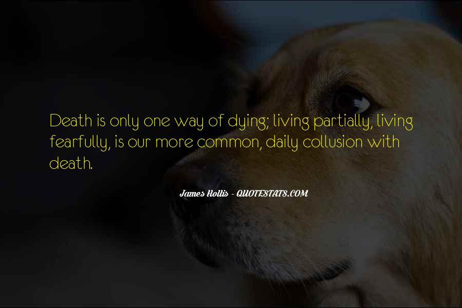 James Hollis Quotes #1101015