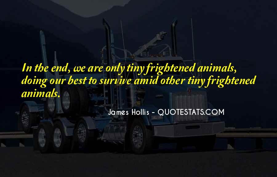 James Hollis Quotes #1324143