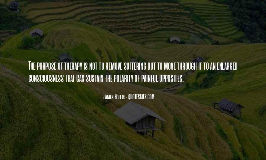 James Hollis Quotes #600510