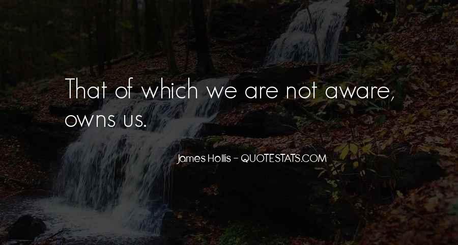 James Hollis Quotes #942546