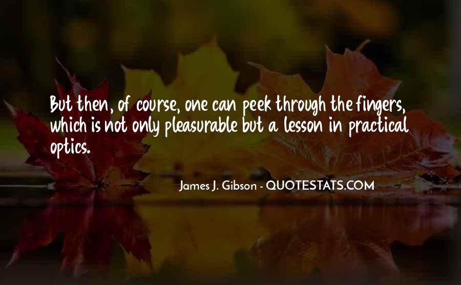 James J. Gibson Quotes #1049328