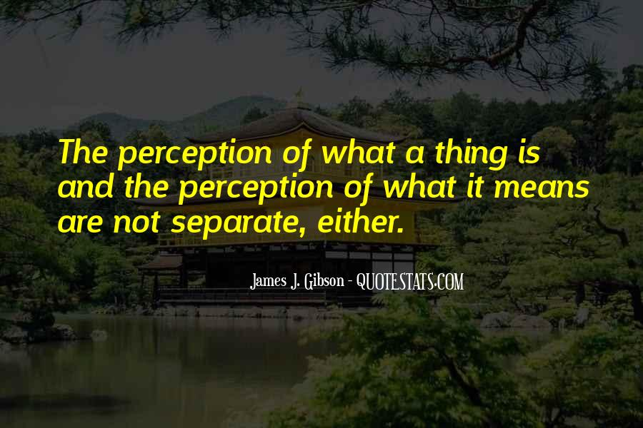 James J. Gibson Quotes #1196875
