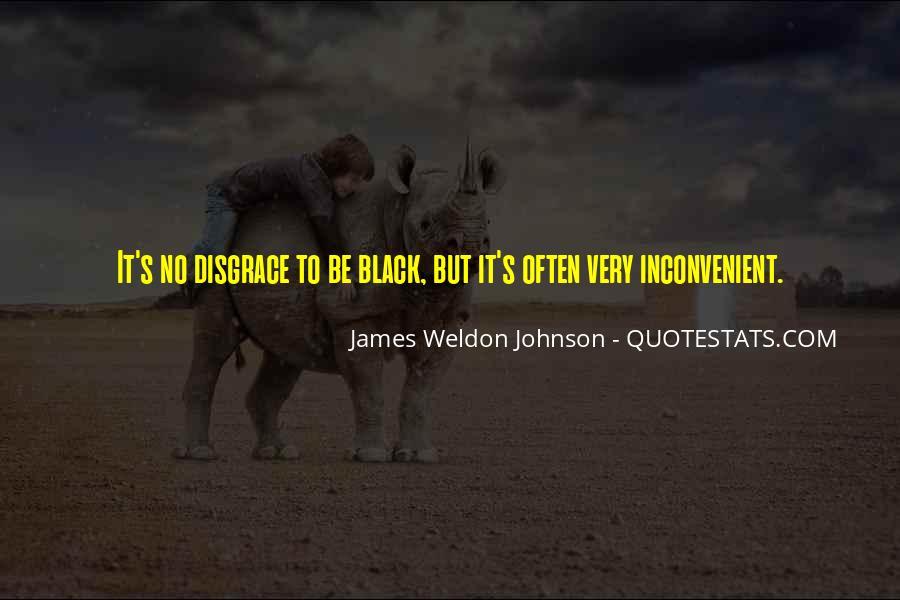 James Weldon Johnson Quotes #64351