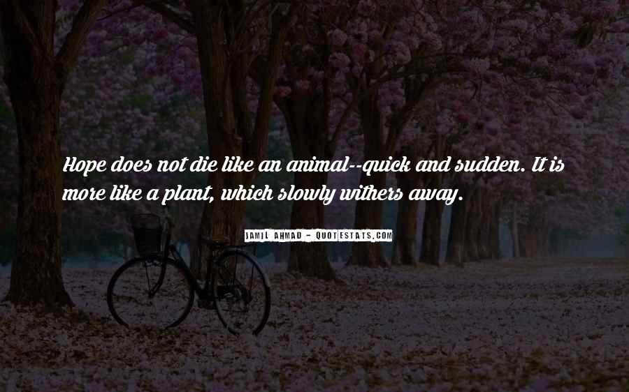 Jamil Ahmad Quotes #1463170