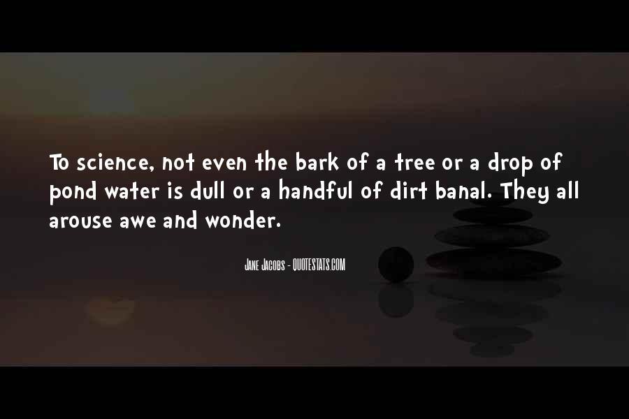 Jane Jacobs Quotes #957114