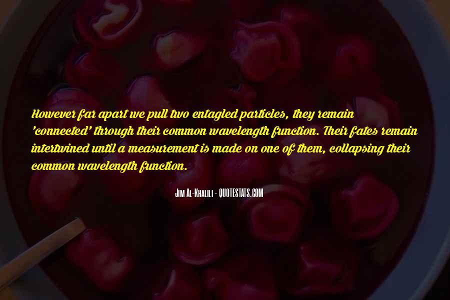 Jim Al-Khalili Quotes #154157
