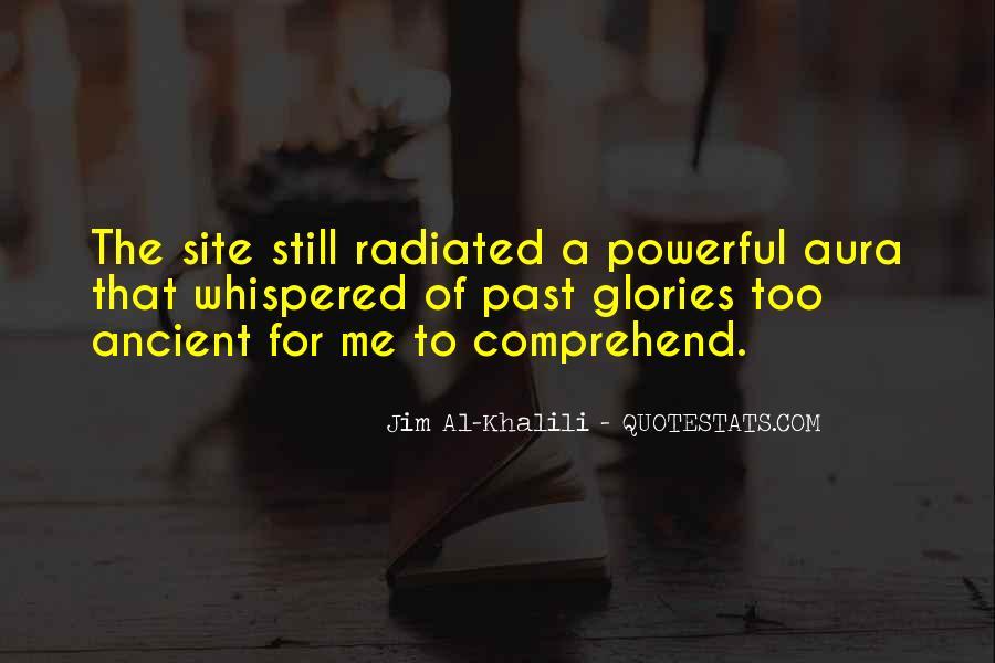 Jim Al-Khalili Quotes #497115