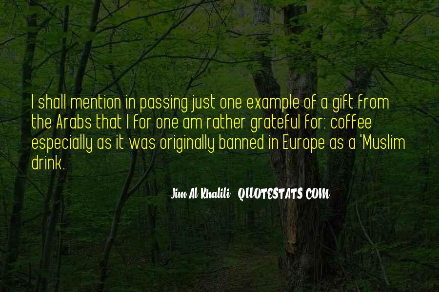 Jim Al-Khalili Quotes #958083