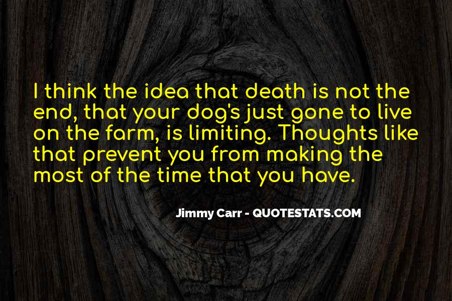 Jimmy Carr Quotes #778581