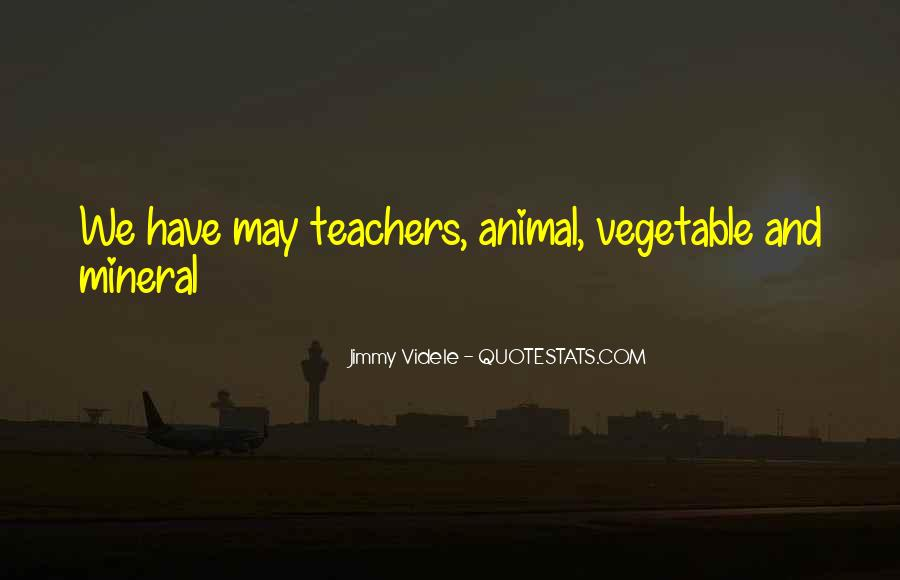 Jimmy Videle Quotes #902359