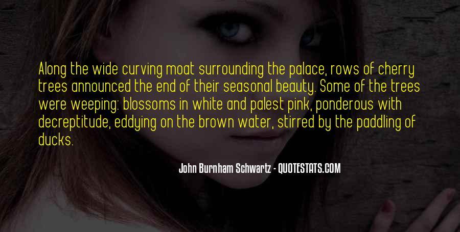 John Burnham Schwartz Quotes #647209