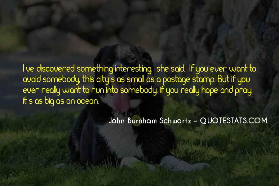 John Burnham Schwartz Quotes #819337