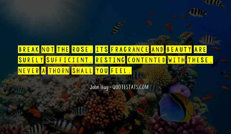 John Hay Quotes #696739