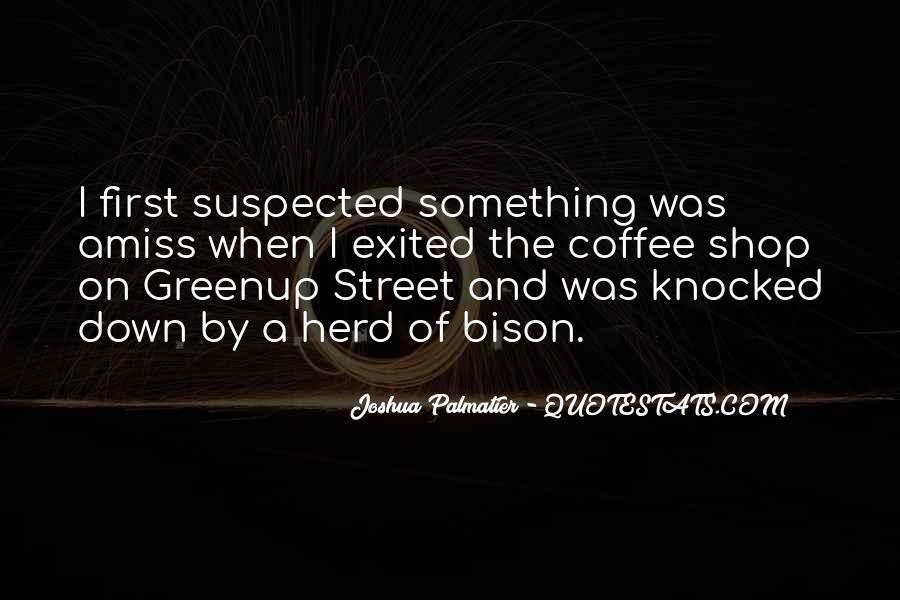 Joshua Palmatier Quotes #177433