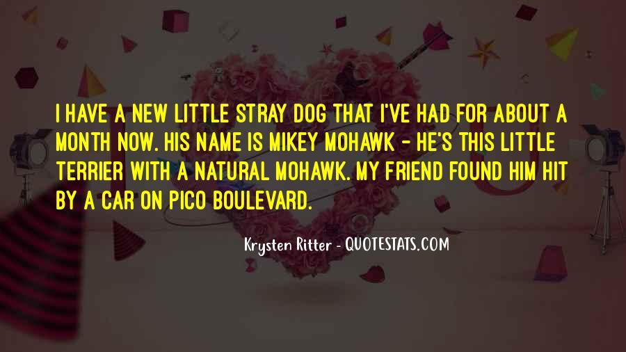Krysten Ritter Quotes #1555095