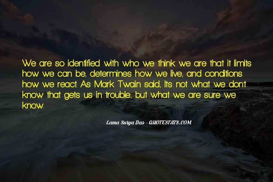 Lama Surya Das Quotes #1342241