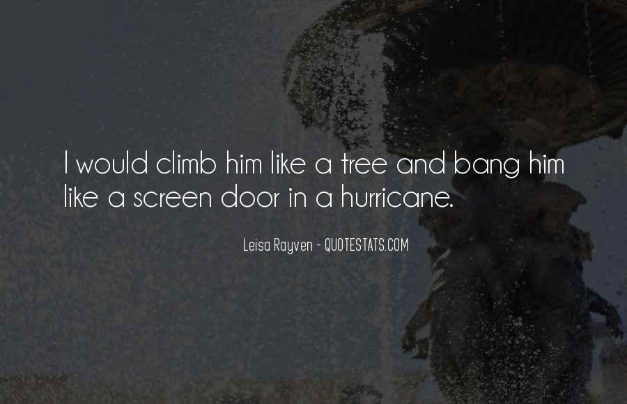 Leisa Rayven Quotes #1096068