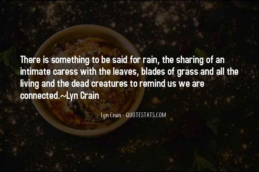 Lyn Crain Quotes #905913