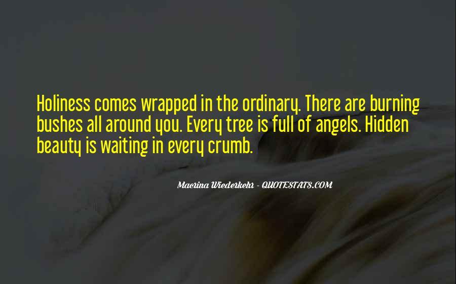 Macrina Wiederkehr Quotes #327295