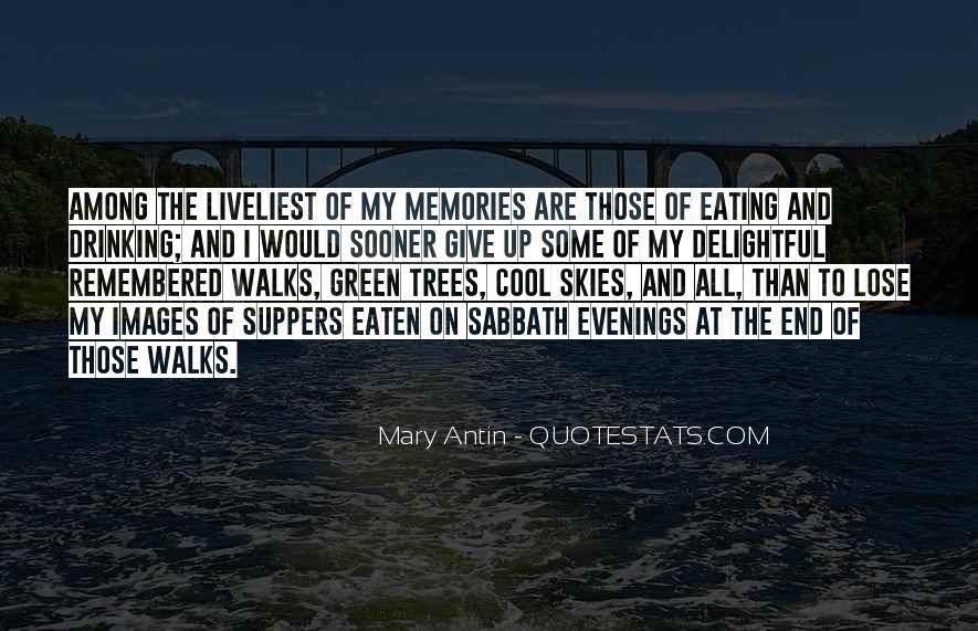 Mary Antin Quotes #1138403