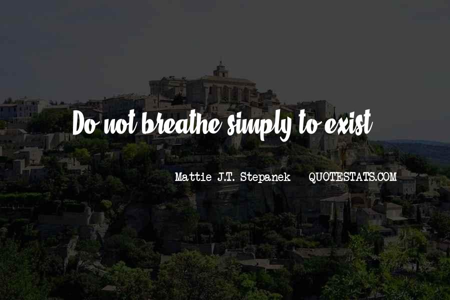 Mattie J.T. Stepanek Quotes #993023