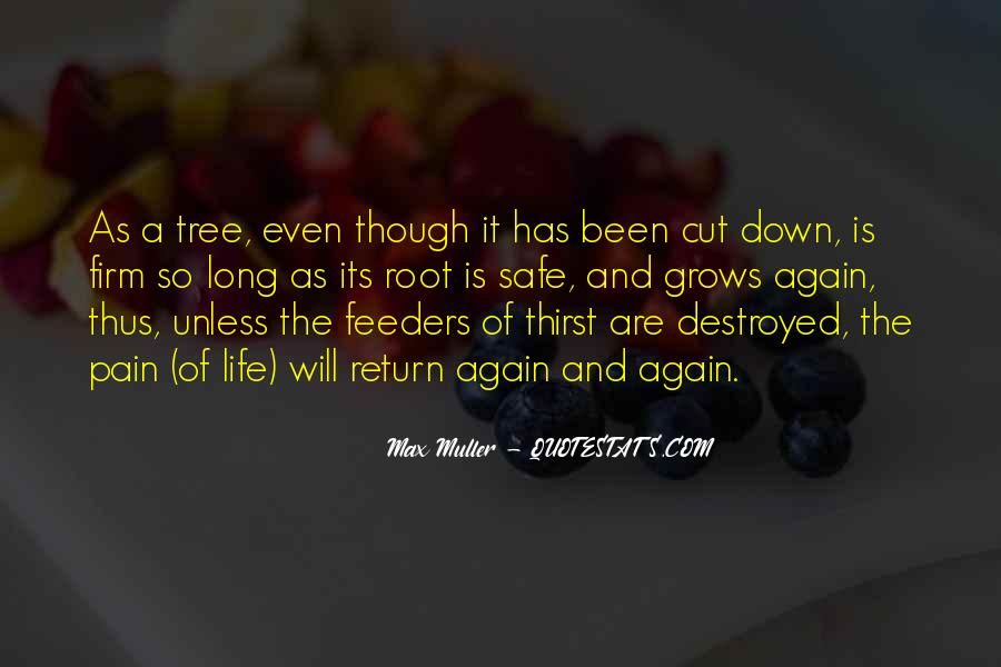Max Muller Quotes #103539