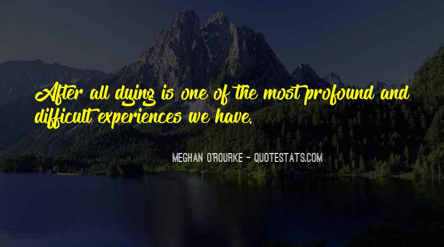 Meghan O'Rourke Quotes #1021846
