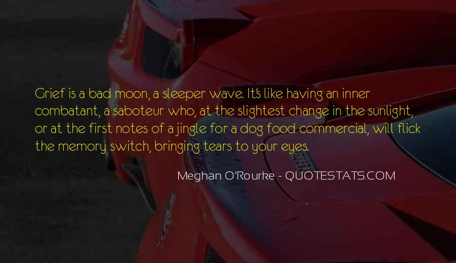 Meghan O'Rourke Quotes #1042160