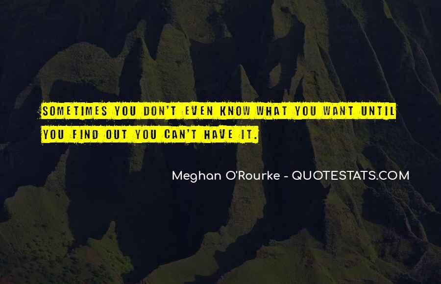 Meghan O'Rourke Quotes #1500420