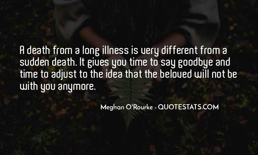 Meghan O'Rourke Quotes #1655313