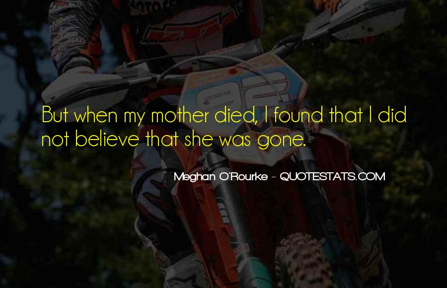 Meghan O'Rourke Quotes #1774886
