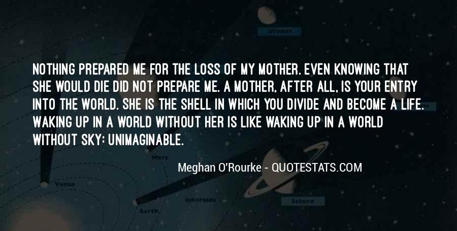 Meghan O'Rourke Quotes #47531