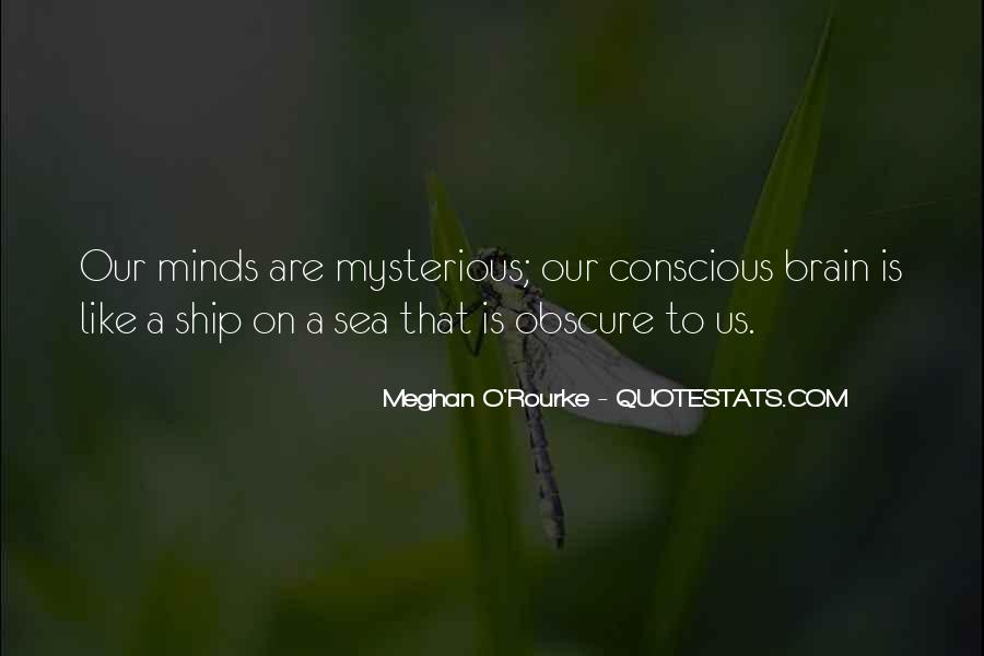 Meghan O'Rourke Quotes #488029