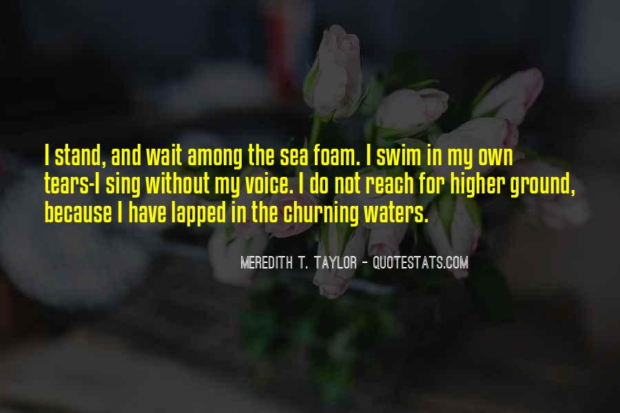 Meredith T. Taylor Quotes #1436101