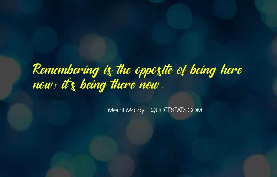 Merrit Malloy Quotes #107966