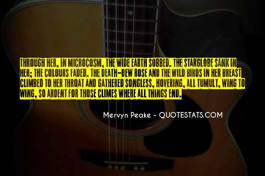 Mervyn Peake Quotes #150841
