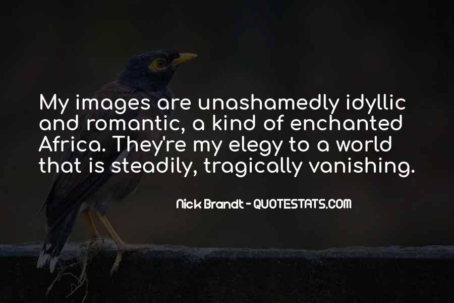 Nick Brandt Quotes #689972