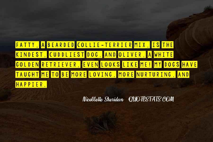 Nicollette Sheridan Quotes #437655
